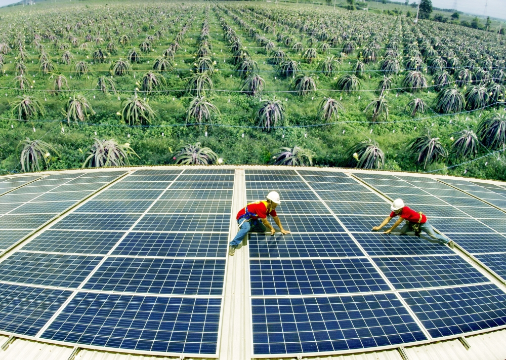 Surge expected in renewable energy as economy recovers